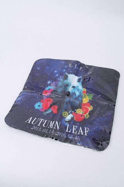 elements.H / Autumn Leaf×elements.H APRTY!!コラボハンドタオル